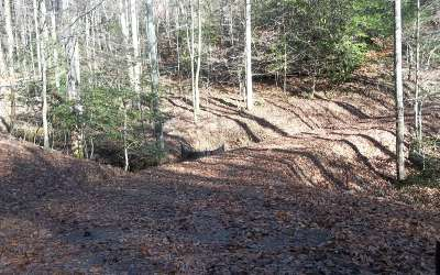 Ellijay Residential Lots & Land For Sale: Pocola Court