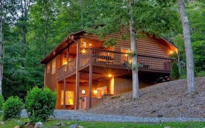 Blue Ridge Single Family Home For Sale: 1380 Peter Knob