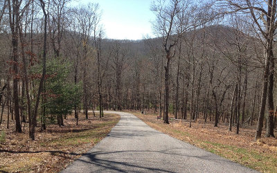 Blairsville Residential Lots & Land For Sale: Lot15 Mystic Ridge