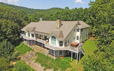 Brasstown Single Family Home For Sale: 877 Wells Road