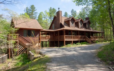 Blairsville Single Family Home For Sale: 418 Oak Hills Drive