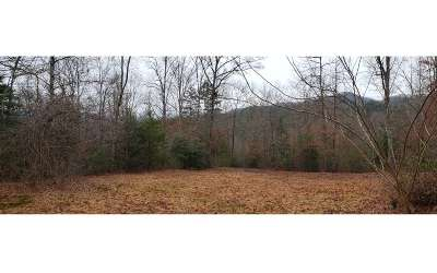 Hayesville Single Family Home For Sale: 885 Lance Cove Rd