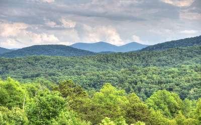 Blue Ridge Single Family Home For Sale: 186 Carlie Trail