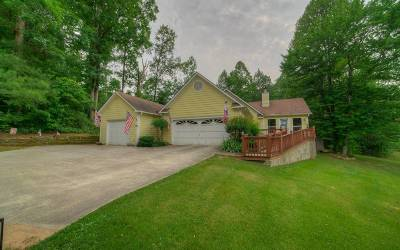Ellijay Single Family Home For Sale: 307 Walnut Ridge Lane