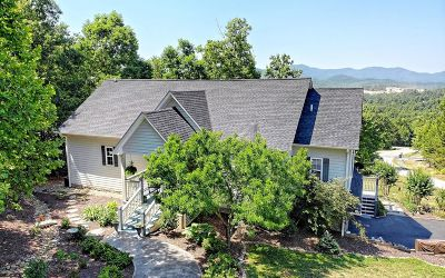 Blairsville Single Family Home For Sale: 836 Summit Way