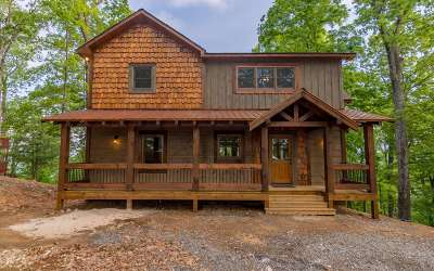 Ellijay Single Family Home For Sale: 347 Walnut Ridge