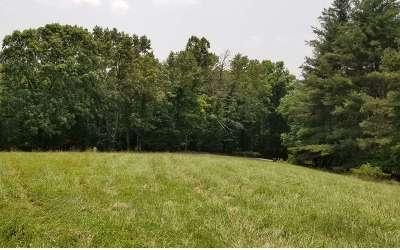 Residential Lots & Land For Sale: Lt29 Mason Farm Road