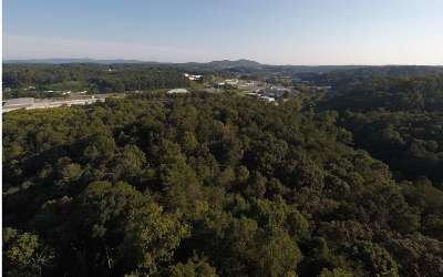 Ellijay Residential Lots & Land For Sale: South Main Street