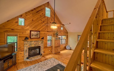 Blairsville Single Family Home For Sale: 161 Allison Ridge Road