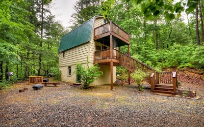 Mineral Bluff Single Family Home For Sale: 161 Tower