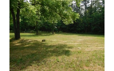 Residential Lots & Land For Sale: 53, 14, 13 Country Vi