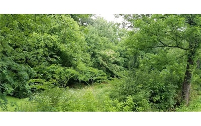 Jasper Residential Lots & Land For Sale: Camp Road