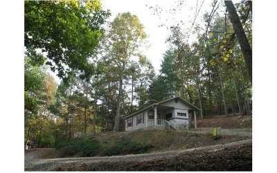 Ellijay Single Family Home For Sale: 115 31st Street