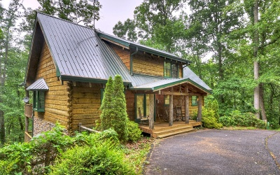 Blairsville Single Family Home For Sale: 322 Mossy Rock Trail