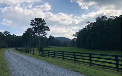 Ellijay Residential Lots & Land For Sale: 21 Spring Camp Road