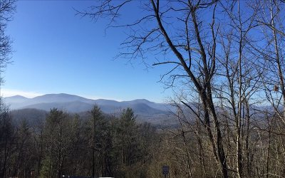 Residential Lots & Land For Sale: Lt 74 Mountain Top Rd.