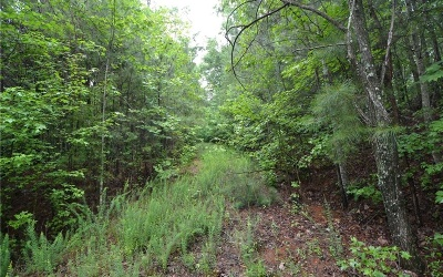 Jasper Residential Lots & Land For Sale: 74 Talley Cove
