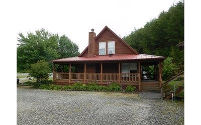 Blairsville Single Family Home For Sale: 67 Lanier Lane