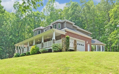 Blairsville Single Family Home For Sale: 39 Meeks Rd