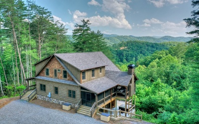 Blue Ridge Single Family Home For Sale: 651 Pony Ghost Trails