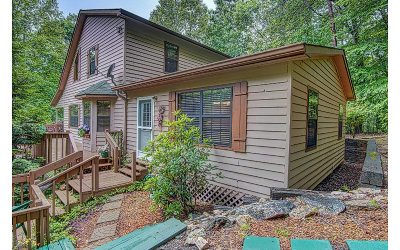 Blairsville Single Family Home For Sale: 541 Darby Lane