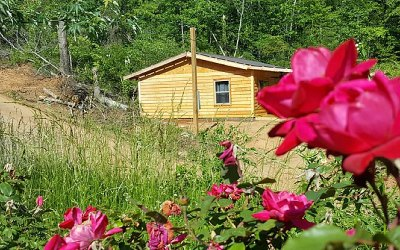 Blue Ridge Single Family Home For Sale: 602 Hwy 2