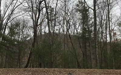 Blairsville Residential Lots & Land For Sale: Lot 73 Mine Cart Tr