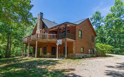 Mineral Bluff Single Family Home For Sale: 589 Crabapple Lane