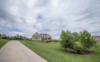 Blairsville Single Family Home For Sale: 190 Bell Boy Run