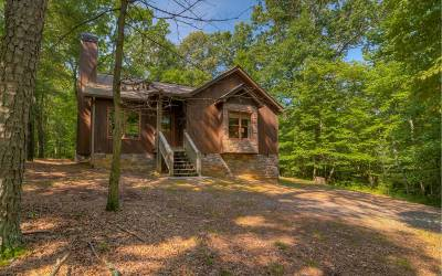 Ellijay Single Family Home For Sale: 32 Wildwood Ct