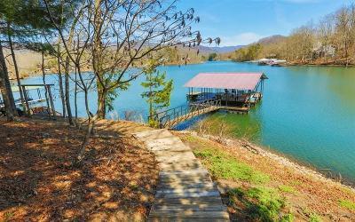 Hayesville Single Family Home For Sale: 310 Hidden Cove Lane