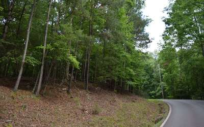 Residential Lots & Land For Sale: L2811 Morely Court
