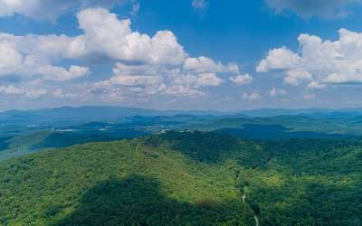 Residential Lots & Land For Sale: 288 Andes Ridge