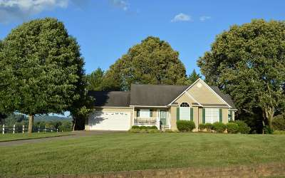 Hiawassee Single Family Home For Sale: 2002 Hidden Valley Road