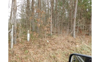 Blairsville Residential Lots & Land For Sale: 2866 Pickelsimer Rd