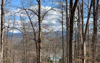 Hayesville Residential Lots & Land For Sale: Lot1c Lakewood Hills