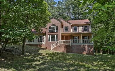 Ellijay Single Family Home For Sale: 80 Castle Court