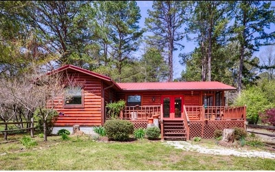 Mineral Bluff Single Family Home For Sale: 222 Mountain Rivers