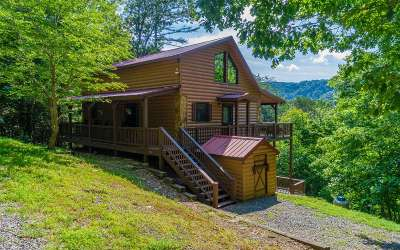 Blue Ridge Single Family Home For Sale: 335 Mountain Laurel Ln