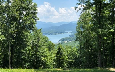 Young Harris Residential Lots & Land For Sale: 38 Mining Gap Trail