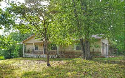 Mineral Bluff Single Family Home For Sale: 1722 Curtis Switch Road
