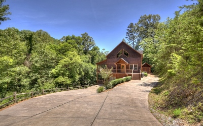 Mineral Bluff Single Family Home For Sale: 185 Sydney Lane