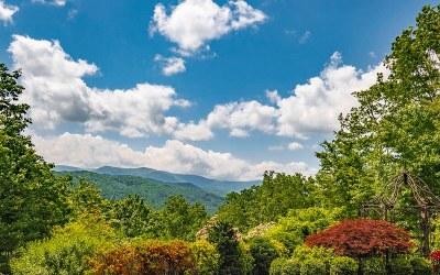 Blue Ridge Single Family Home For Sale: 89 East Dream Catcher
