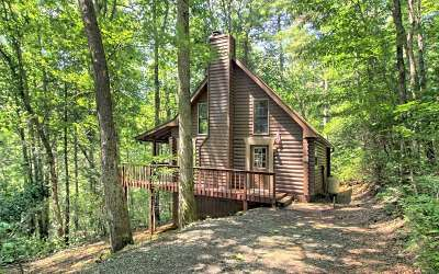 Blairsville Single Family Home For Sale: 49 Lara's Peace Lane