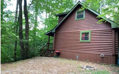 Blairsville Single Family Home For Sale: 99 Lara's Peace Lane