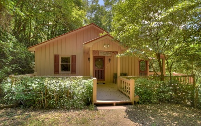 Mineral Bluff Single Family Home For Sale: 244 Salem Valley Road