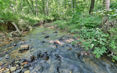 Ellijay Residential Lots & Land For Sale: 2+ Ac Castle Court