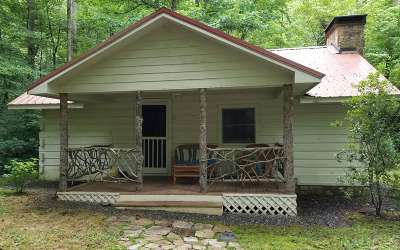 Hayesville Single Family Home For Sale: 504 Compass Creek