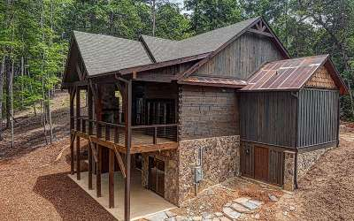 Morganton GA Single Family Home For Sale: $799,000