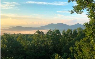 Blue Ridge Residential Lots & Land For Sale: 316 Blue Sky Dr